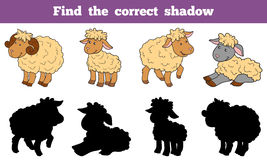 Find the correct shadow (sheep family) Royalty Free Stock Image