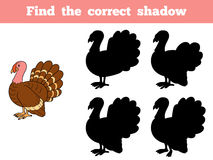 Find the correct shadow (turkey). Game for children: Find the correct shadow (turkey Royalty Free Stock Image