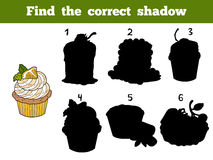 Find the correct shadow. Vector color set with cakes Royalty Free Stock Photo