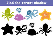 Find the correct shadow. Vector color set of sea life Stock Image