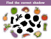 Find the correct shadow (vegetables). Find the correct shadow, education game for children (vegetables Royalty Free Stock Image
