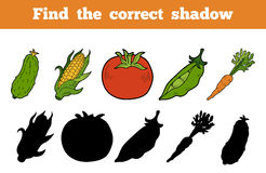 Find the correct shadow (vegetables). Find the correct shadow, education game for children (vegetables Stock Photo