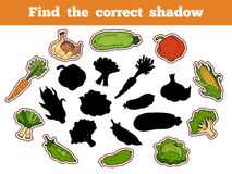 Find the correct shadow (vegetables). Find the correct shadow, education game for children (vegetables Royalty Free Stock Photos