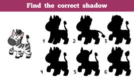 Find the correct shadow (zebra) Royalty Free Stock Photography