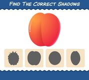 Find the correct shadows of cartoon nectarines. Searching and Matching game. Educational game for pre shool years kids and