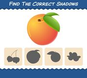 Find the correct shadows of cartoon peachs. Searching and Matching game. Educational game for pre shool years kids and toddlers