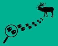 Find the deer on the map. Magnifying glass with trail. Flat style.  Royalty Free Stock Images