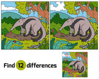 Find differences (anteater) Stock Photography