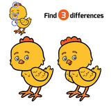 Find differences, Chick. Find differences, education game for children, Chick Stock Photo