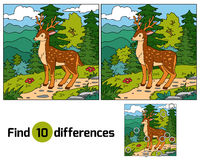 Find differences for children (deer and background). Find differences, education game for children (deer and background Stock Photography