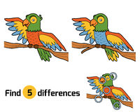 Find differences for children, parrot. Find differences, education game for children, parrot Stock Images