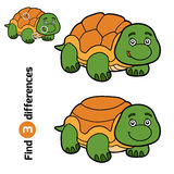 Find differences for children (turtle). Find differences, education game for children (turtle Royalty Free Stock Image