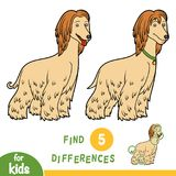 Find differences, education game, Afghan hound. Find differences, education game for children, Afghan hound Royalty Free Stock Image