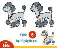 Find differences, education game, Poodle. Find differences education game for children, Poodle Royalty Free Stock Images