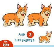 Find differences, education game, Welsh corgi. Find differences, education game for children, Welsh corgi royalty free illustration