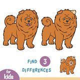 Find differences, education game, Chow chow. Find differences, education game for children, Chow chow Royalty Free Stock Images