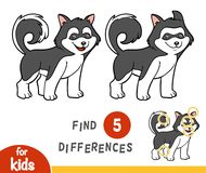 Find differences, education game, Husky. Find differences education game for children, Husky royalty free illustration