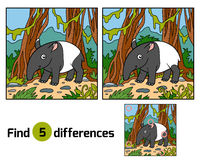 Find differences education game, Malayan tapir Stock Photography