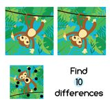 Find the differences educational children game. Kids activity sheet with monkey in jungle. Find the differences educational children game with answer. Monkey in Royalty Free Stock Photography