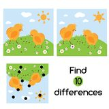Find the differences educational children game. Kids activity sheet with chickens on grass. Find the differences educational children game with answer. Kids Stock Photos
