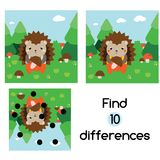 Find the differences educational children game. Kids activity sheet with hedgehog in forest. Find the differences educational children game with answer. Kids Stock Photography