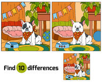 Find differences, game for children (french bulldog and backgrou. Find differences, education game for children (french bulldog and background Stock Photo