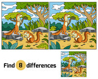 Find differences, game for children (xerus and background) Royalty Free Stock Photo