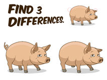 Find differences game pig vector illustration Royalty Free Stock Photos
