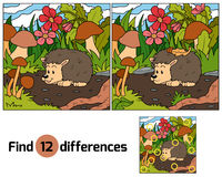 Find differences (hedgehog). Find differences game for children (hedgehog Stock Image