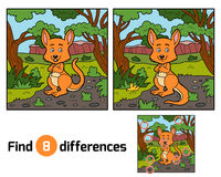 Find differences, Kangaroo. Find differences education game for children, Kangaroo Royalty Free Stock Image