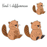 Find differences kids layout for game beaver. Cartoon doodle hand drawn  vector illustration Stock Image