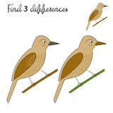 Find differences kids layout for game bird Royalty Free Stock Photos