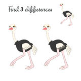 Find differences kids layout for game ostrich. Cartoon doodle hand drawn vector illustration Royalty Free Stock Photos