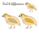 Find differences kids layout for game quail. Cartoon doodle hand drawn vector illustration Royalty Free Stock Photography