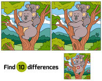 Find differences (koala). Find differences game for children (koala Royalty Free Stock Images