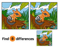 Find differences, Numbat. Find differences education game for children, Numbat stock illustration