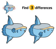 Find differences, Ocean sunfish. Find differences, education game for children, Ocean sunfish Royalty Free Stock Image