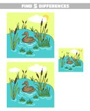 Find Differences Pond Duck. Find 5 differences. Page of book with game for children. Forest animals. Vector illustration Royalty Free Stock Images