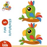 Find differences, Parrot. Find differences, education game for children, Parrot Stock Images