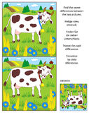 Find the differences picture puzzle with milk cow. Visual puzzle: Find the seven differences between the two pictures of spotted milk cow on the pasture. Answer stock illustration