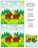 Find the differences picture puzzle with two little brown bears. Visual puzzle: Find the seven differences between the two pictures of two little brown bears in Royalty Free Stock Photo