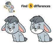 Find differences, Rabbit Royalty Free Stock Photos