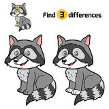Find differences, Raccoon. Find differences, education game for children, Raccoon Royalty Free Stock Photo