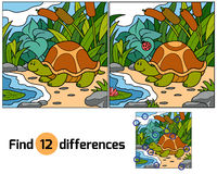 Find differences (turtle). Game for children: Find differences (turtle Stock Image