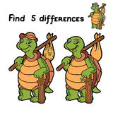 Find differences (turtle) Stock Photos