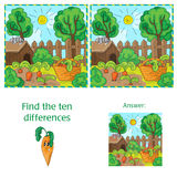 Find differences between the two images carrots in the garden Stock Photos