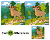 Find differences (Urial, wild sheep). Find differences for children (Urial, wild sheep Stock Photo