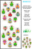Find the differences visual puzzle - bugs and beetles. Picture puzzle: Find the seven differences between the two pictures of various bugs and beetles (plus same Royalty Free Stock Photo