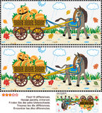 Find the differences visual puzzle - burro pulling cart with pumpkins Stock Photo