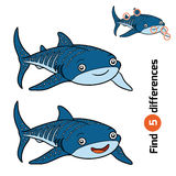 Find differences, Whale shark Stock Image